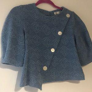 Embroidered Zara puff sleeve crop top